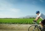 BikeRide_Indio_MonroeSt